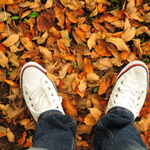 2018 秋 落ち葉とスニーカー